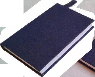 NA BIG BOOK